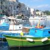 Illegittime le proroghe al 2033 delle concessioni del demanio marittimo
